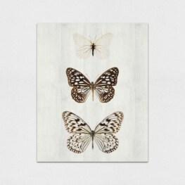 Butterfly Wood Wall Art - Butterfly Wood Canvas