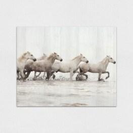 White Horse Wood Wall Art - Horse Wood Canvas Wall Art