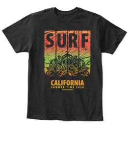 CALIFORNIA 130121-11