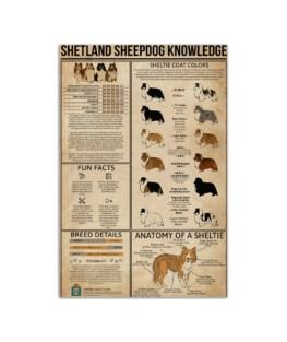 "Shetland sheepdog knowledge board Wall Poster vertical 7x11"" 16x24"" 24x36"""