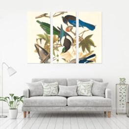 Birds Printed Canvas Decor, Canvas Wall Art, Canvas Painting, Home Decor Wall Art, Framed Painting,