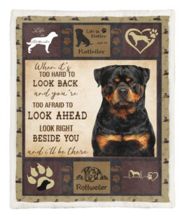 Rottweiler Black 60x80 Inch Adult Blanket