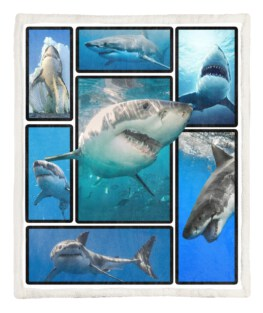 Shark 3D 60x80 Inch Adult Blanket