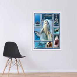Shark Canvas Cotton 1 Piece - Portrait Full Size