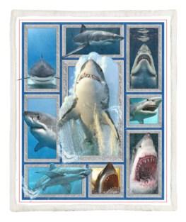 Shark 60x80 Inch Adult Blanket