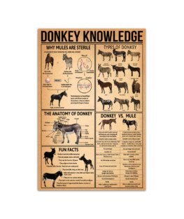 """Donkey knowledge Wall Poster Vertical 7x11"""" 16x24"""" 24x36"""""""