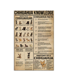 """Chihuahua Knowledge Wall Poster Vertical 7x11"""" 16x24"""" 24x36"""""""